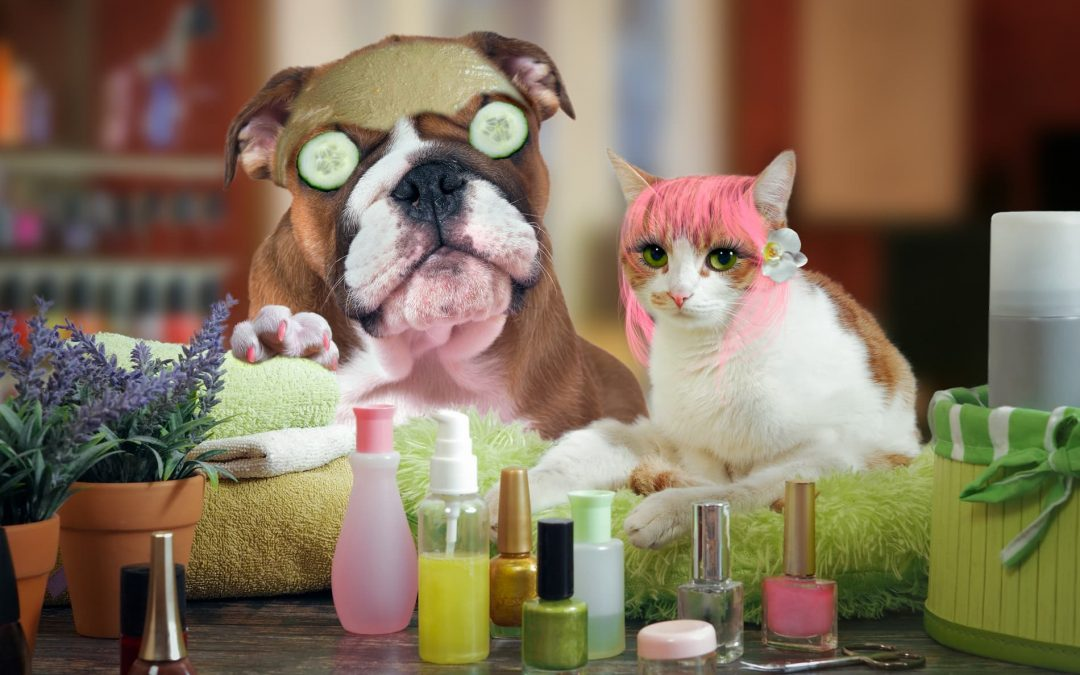 How do you find the right pet groomer?